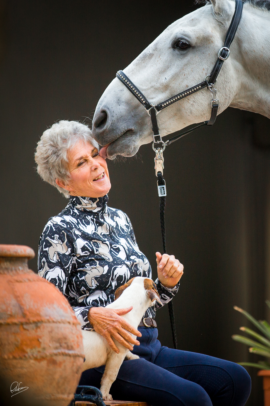 Frances Carbonnel: How I found my Dream Lusitano